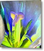 Tulips - Perfect Love - Photopower 2158 Metal Print