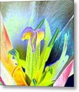 Tulips - Perfect Love - Photopower 2161 Metal Print