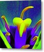 Tulips - Perfect Love - Photopower 2167 Metal Print
