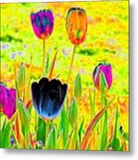 Tulips - Perfect Love - Photopower 2169 Metal Print