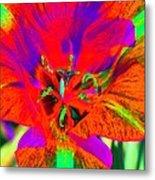 Tulips - Perfect Love - Photopower 2179 Metal Print