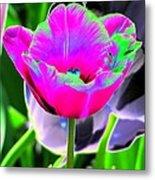 Tulips - Perfect Love - Photopower 2190 Metal Print