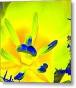 Tulips - Perfect Love - Photopower 2191 Metal Print