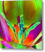 Tulips - Perfect Love - Photopower 2201 Metal Print
