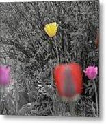 Tulips Reign Metal Print