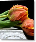 Tulips Together Metal Print