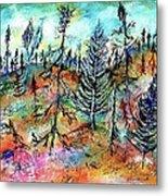 Quebec Taiga Landscape Metal Print