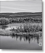 Tundra Pond Reflections Metal Print