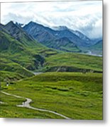 Tundra View From Eielson Visitor's Center In Denali Np-ak  Metal Print