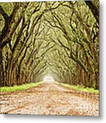 Tunnel In The Trees Metal Print