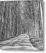 Tunnel Of Trees Black And White Metal Print