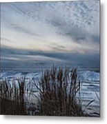 Tunnel Park Through The Grass Holland Michigan Metal Print