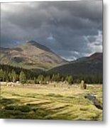 Tuolumne Meadows In Yosemite National Park Metal Print