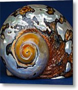 Turbo Smarticus Metal Print