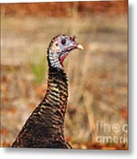 Turkey Profile Metal Print