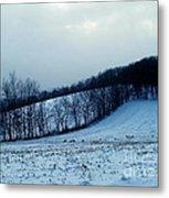 Turkeys In A Winter Field Metal Print