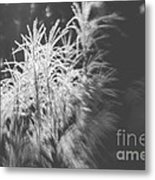 Turn On The Light Metal Print