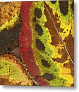 Turning Leaves 3 Metal Print
