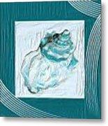 Turquoise Seashells Xxiv Metal Print