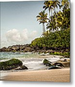 Turtle Beach Metal Print by Jason Bartimus