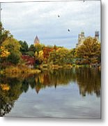 Turtle Pond - Central Park - Nyc Metal Print