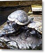 Turtle Rant Metal Print