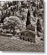 Tuscan Vinyard Metal Print