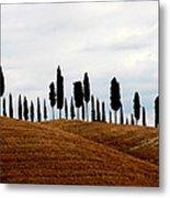 Tuscany Hill Metal Print by Arie Arik Chen