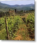 Tuscany Vineyard No.2 Metal Print