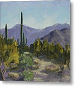 The Serene Desert Metal Print