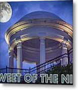Tweet Of The Night 14 Metal Print