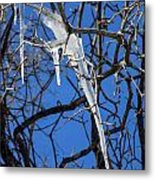 Twigs And Ice Metal Print