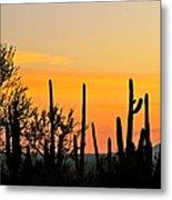 Twilight After Sunset Sonoran Desert Metal Print