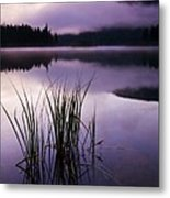 Twilight Glow Metal Print