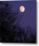 Twilight Moon Metal Print by Rona Black
