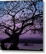 Twilight On Hilo Bay Hawaii Metal Print