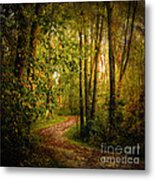 Twilight Rainbow Walk Metal Print