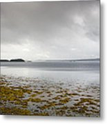 Twillingate Bay Metal Print