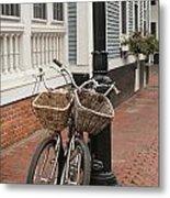 Twin Bicycles Metal Print