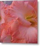 Twin Gladiola Blooms Metal Print