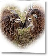 Twin Soays Metal Print