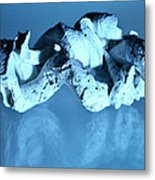 Twisted Worm Shells Metal Print