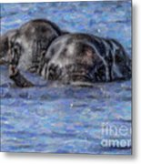 Two African Elephants Swimming In The Chobe River Metal Print