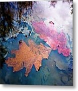 Two Autumn Leaves Metal Print