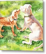 Two Brothers Labradors Metal Print