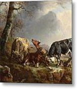 Two Bulls Defend Against A Cow Attacked By Wolves Metal Print by Jacques Raymond Brascassat