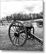 Two Cannons Metal Print