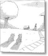 Two Cats Sit On The Front Yard Remarking At A Dog Metal Print