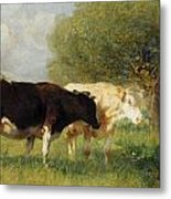 Two Cows In A Meadow Metal Print
