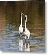 Two Egrets In The Pond Metal Print